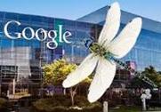 Googles-Dragonfly.jpg