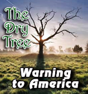 The-Dry-Tree-Warning-to-America.PNG